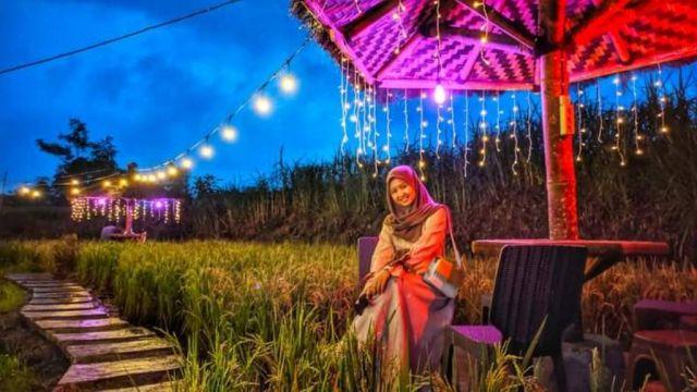 Spot Foto Cafe Sawah Sumber Mrutu Lumajang Sangat Instagramable