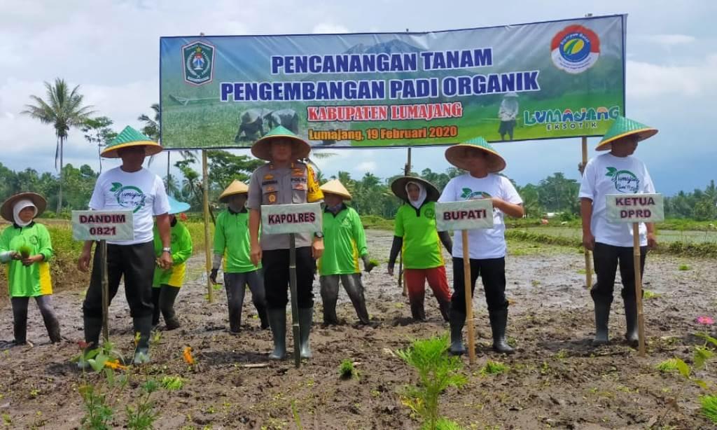 DPRD Lumajang Dukung Pemerintah Kembangkan Pertanian Organik