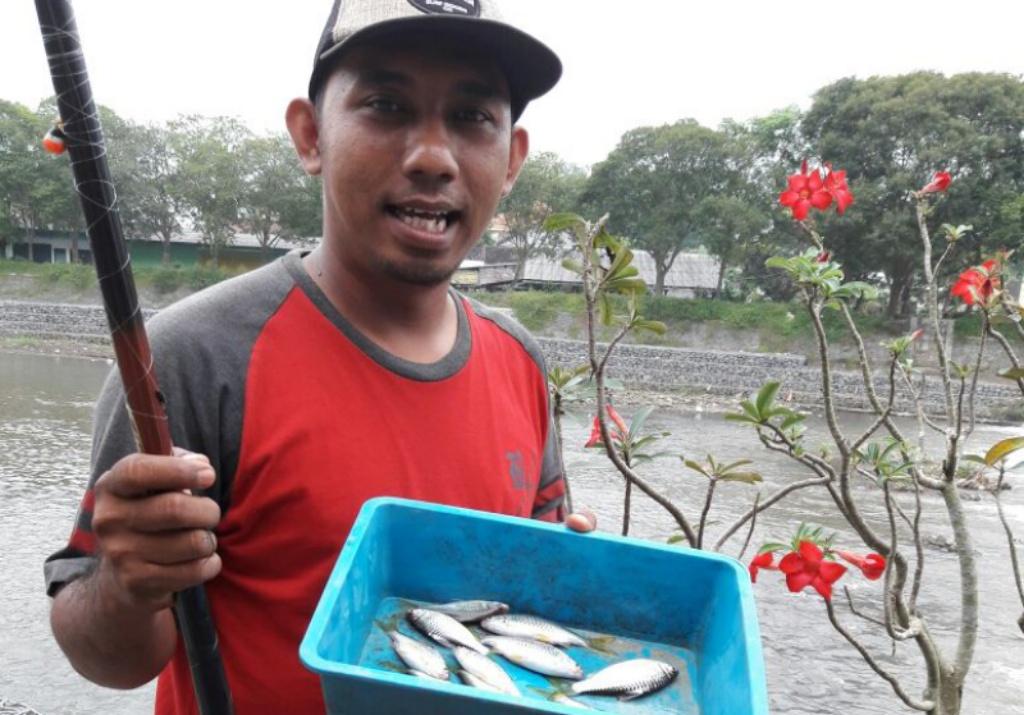 Kali Asem Tengah Kota Lumajang Mulai Bersih dan Banyak Ikannya